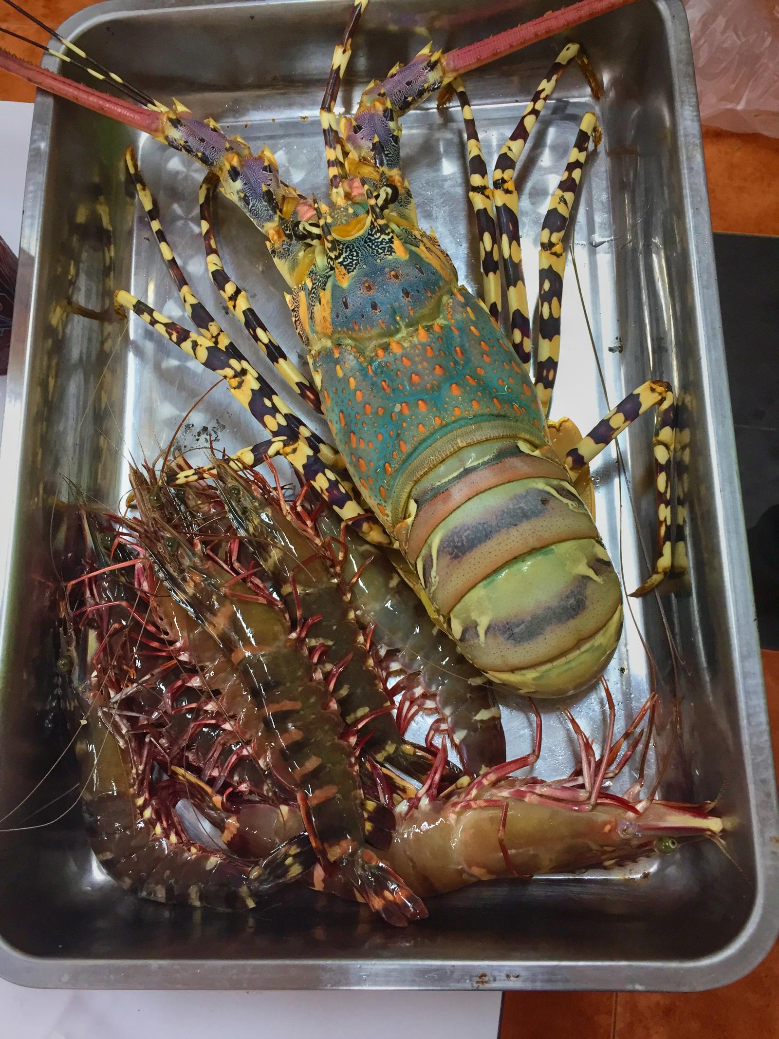Fresh Andaman seafood